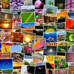 La création d'albums photos en ligne : pour un bonheur qui se partage