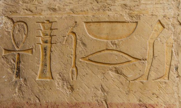 Les liens insoupçonnables entre alimentation et archéologie