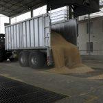 Tout savoir sur les silos agricoles à grain