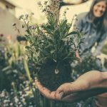 Le jardin, nouvel espace de vie des Français