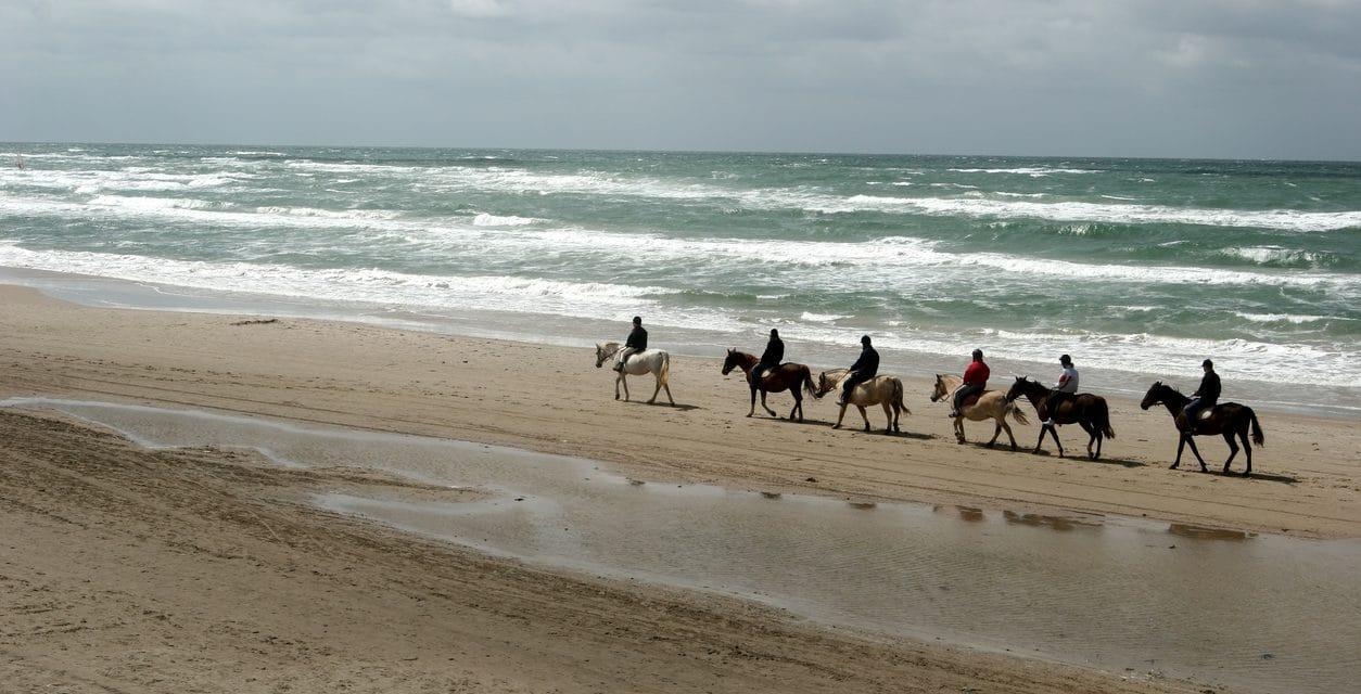 Balader à cheval et à poney à Port Camargue